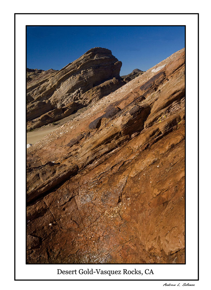 VASQUEZ ROCKS DESERT GOLD