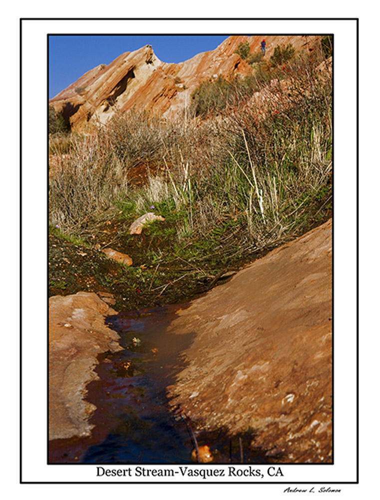 VASQUEZ ROCKS -DESERT STREAM